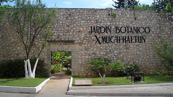 Gu a de atractivos tur sticos en campeche campeche m xico for Jardin botanico xmuch haltun